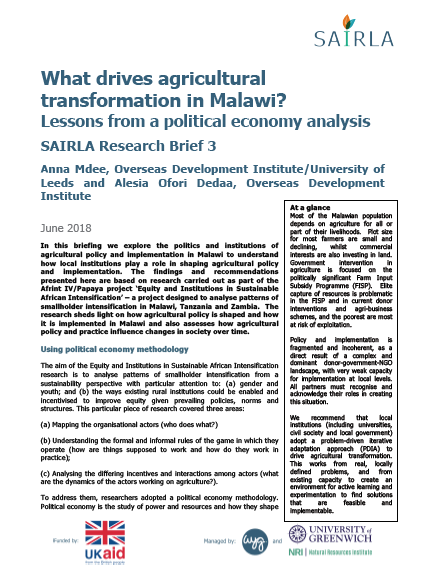 What drives agricultural transformation in Malawi? Lessons